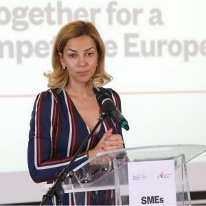 """Se lansează Programul """"Dezvoltarea afacerilor, inovare și IMM"""" în cadrul Granturilor SEE și Norvegiene 2014-2021"""