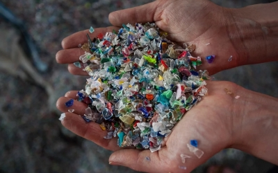 "Conferința ""How to combat plastic waste pollution in Europe?"" - 22 mai 2019 București"