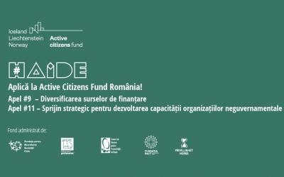 2 noi apeluri de finanțare în valoare totală de 3.250.000 euro pentru organizațiile neguvernamentale și non-profit